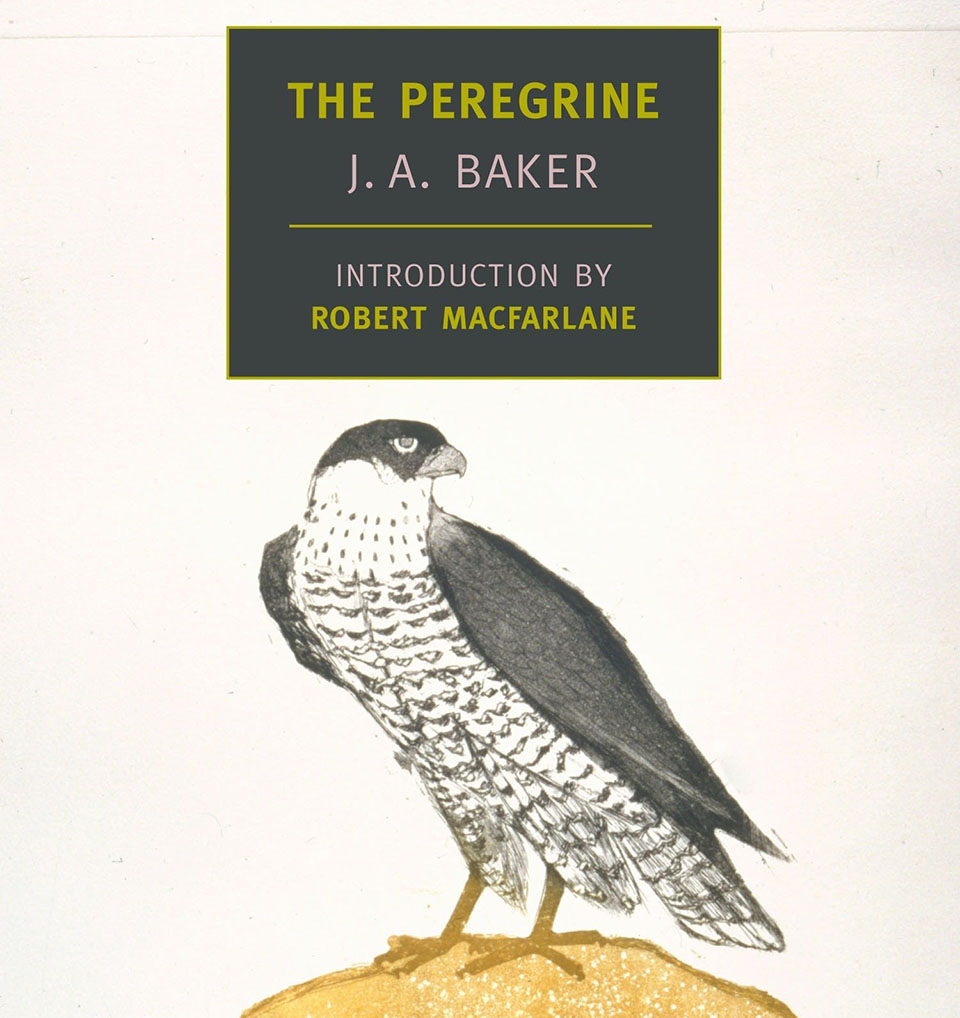 The Peregrine, J.A. Baker - Jackson Hole float trips