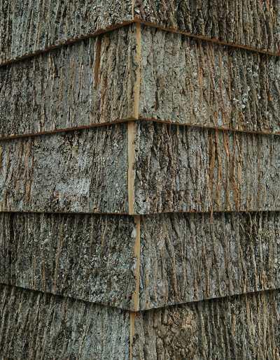 Poplar Tree Bark Siding | Tyres2c