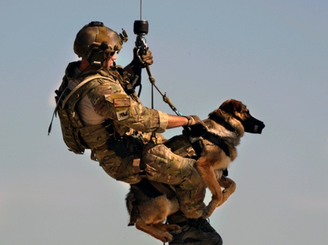 Military man and his dog getting lowered from a helicopter.