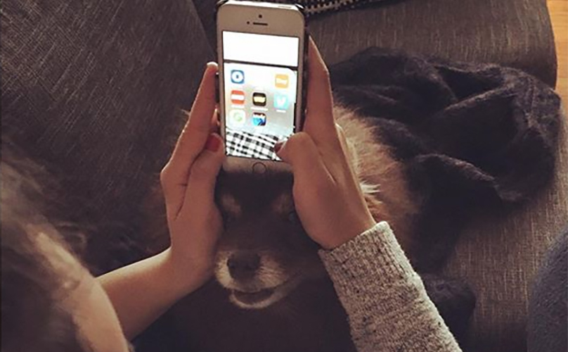15 Things Only People With Clingy Dogs Understand