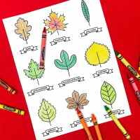 Freebie: A Printable Leaf Activity Kit for Kids