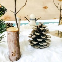 Make: A Mini Winter Sensory Garden