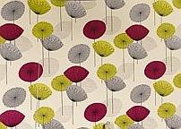 Dandelion-Clocks-by Fiona Howard
