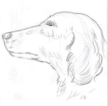 SketchBook_p10