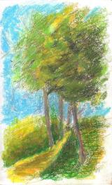 SketchBook_p20