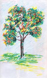 SketchBook_p26