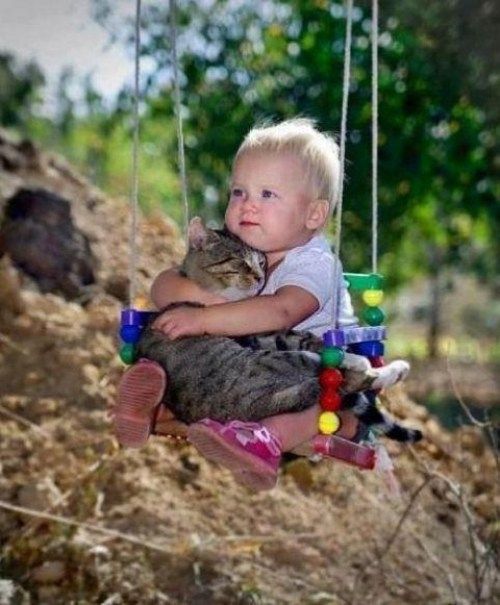 baby-on-swing-with-cat