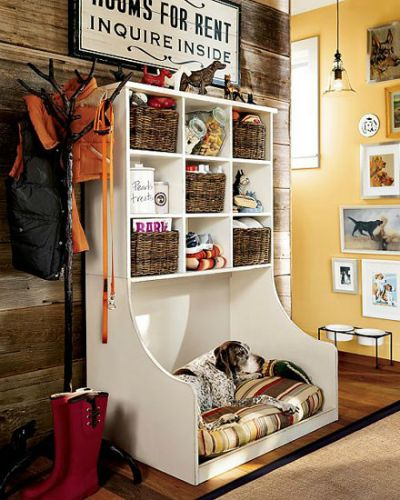 cool dog bed 6