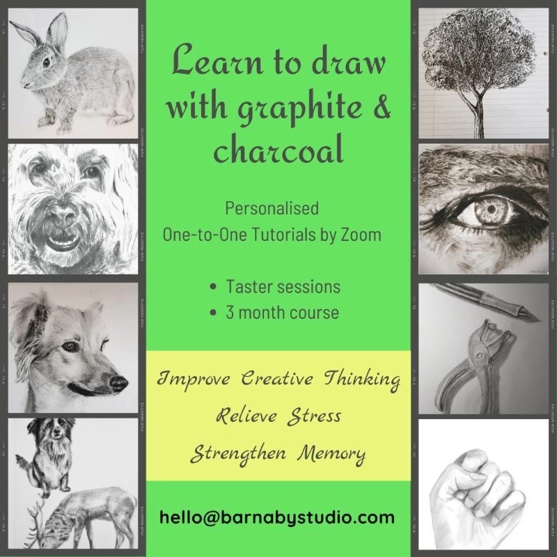 Learn to Draw Online with Artist Jessica Barnaby and Barnaby Studio