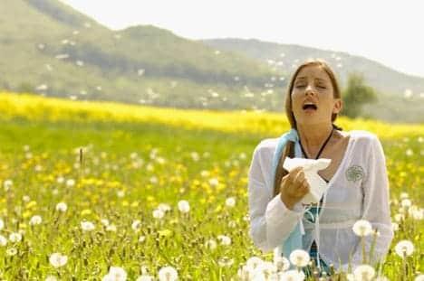 Allergi i sommerperioden med pollen osv