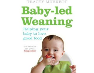 BLW book :: The baby stuff we actually needed, part 5