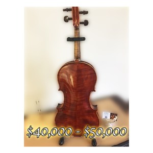 """Genuzio Carletti 16 1/8"""" viola"""