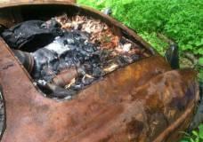 1957 Mercedes 190SL burned up and for sale on Craigslist drivers quarter