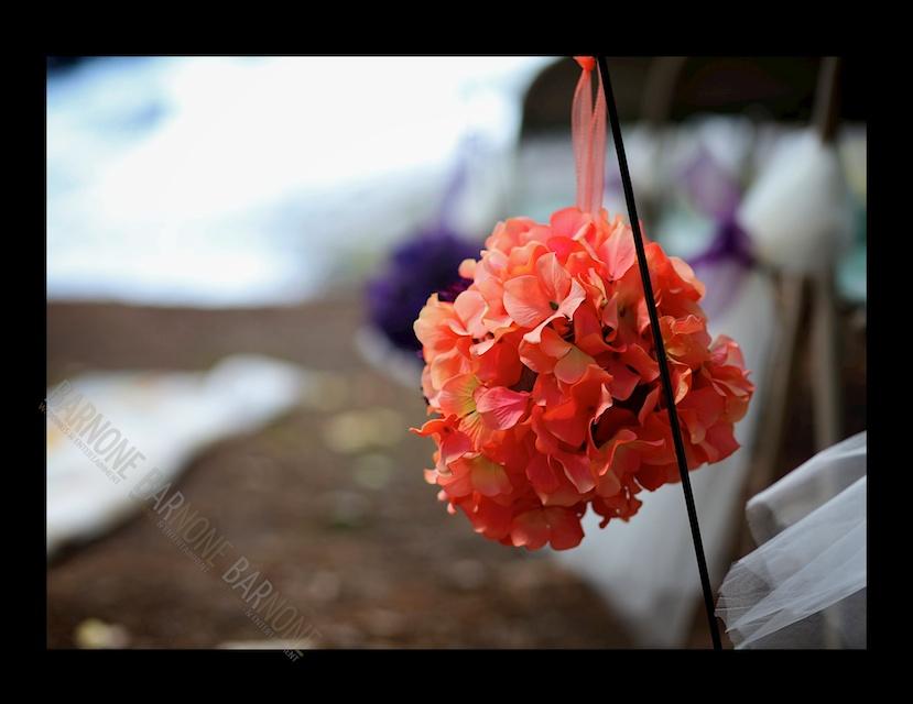 Hideaway Hills Wedding 1151