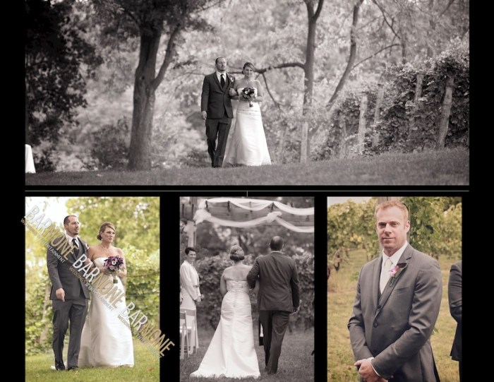 Bar None Photography - Monterre Vineyards Wedding 1304