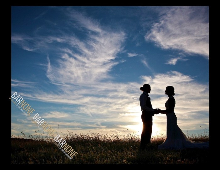Bar None Photography - Must Have Wedding Photos 1491