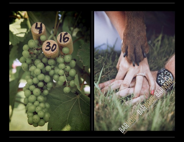 Bar None Photography - Clover Hill Engagement 1578