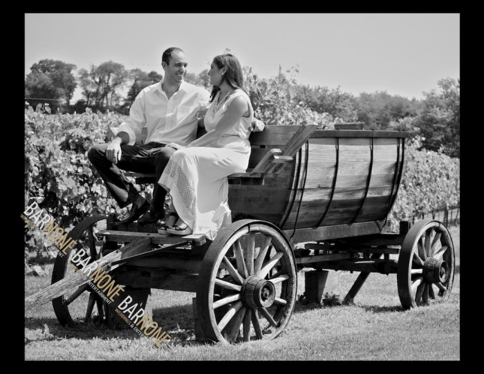 Clover Hill Engagement Photography - Bar None Photography 1668