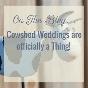 Cow Shed Weddings are Now Officially a 'Thing'