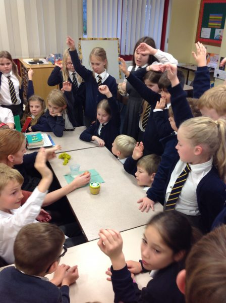 Year 4 are learning about the digestive system….
