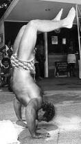 handstand pushups