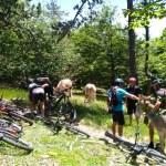 Randonnées VTT Baronnies Provencale Mont Ventoux
