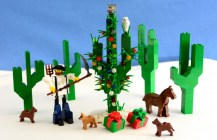 Christmas Cactus 2014