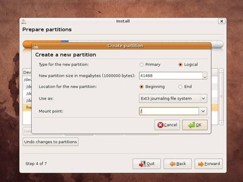 / partition (root partition)