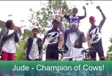 Champion of Cows