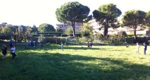 TAP Baseball Montpellier
