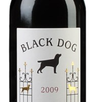 Black Dog 2009
