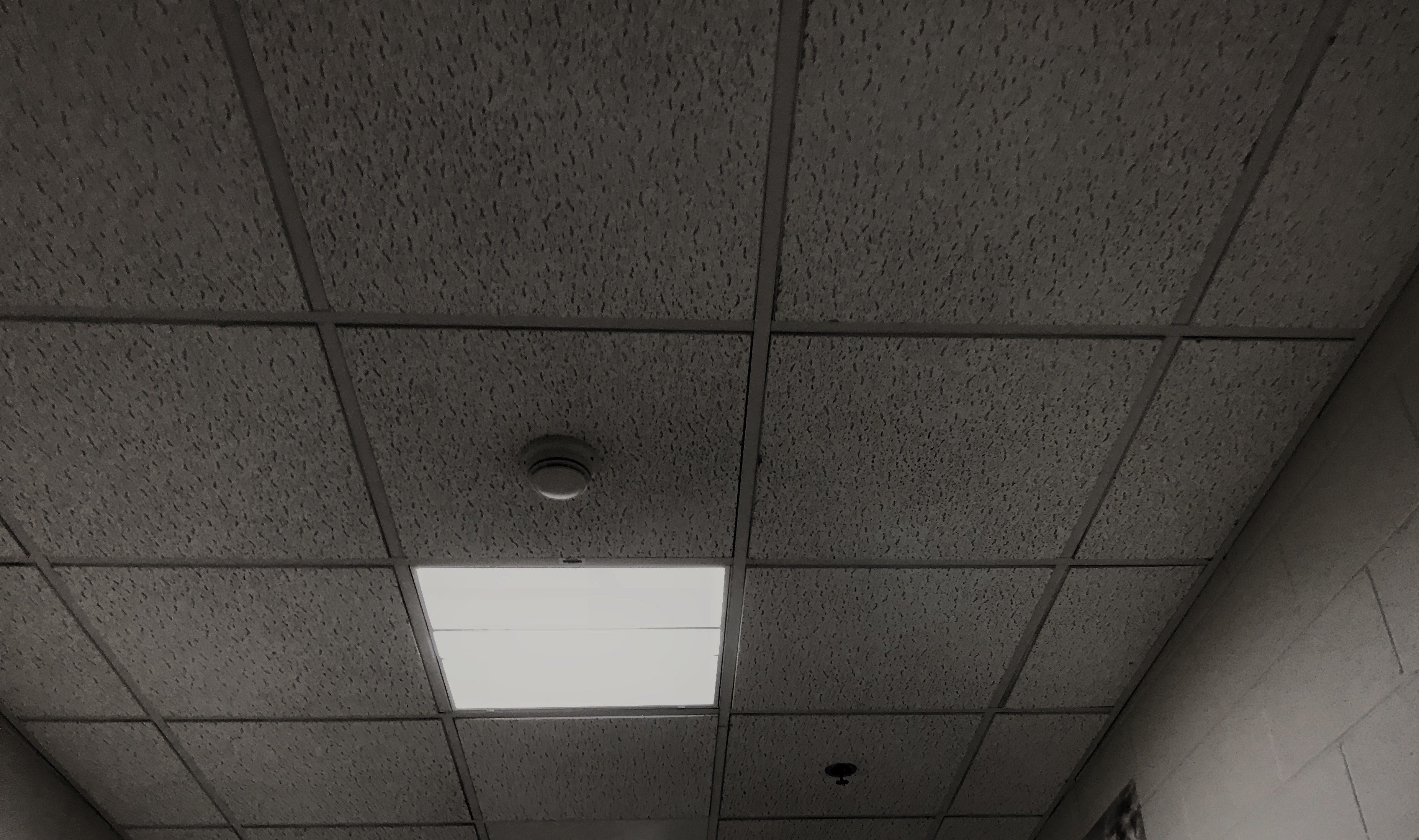 I Was Hovering Just Below the Hospital Ceiling, Contemplating My Death