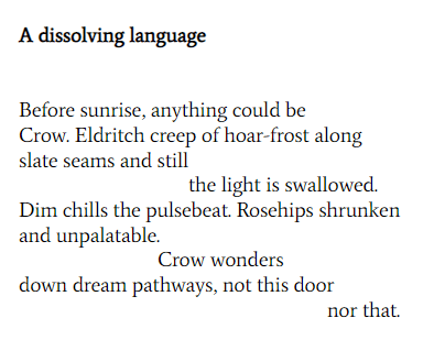 A dissolving language Before sunrise, anything could be Crow. Eldritch creep of hoar frost along slate seams and still the light is swallowed dim chills the pulsebeat. Rosehips shrunken and unpalatable. Crow wonders down dream pathways, not this door nor that