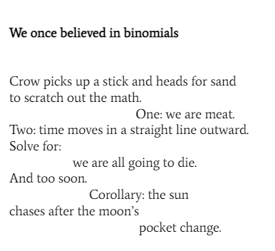 We once believed in binomials Crow picks up a stick and heads for sand to scratch out the math. One: we are meat. Two: time moves in a straight line outward. Solve for: we are all going to die. And too soon. Corollary: the sun chases after the moon's pocket change.