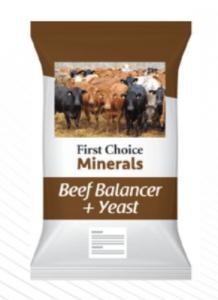 Bag of beef Balancer + Yeast