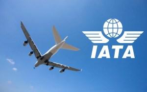 The International Air Transport Association (IATA) logo.