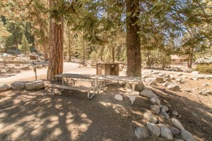 Accessible picnic table at Lodgepole Campground