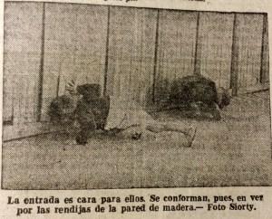 Miróns na barraca de Barriga Verde no Berbés. 1956. Faro de Vigo