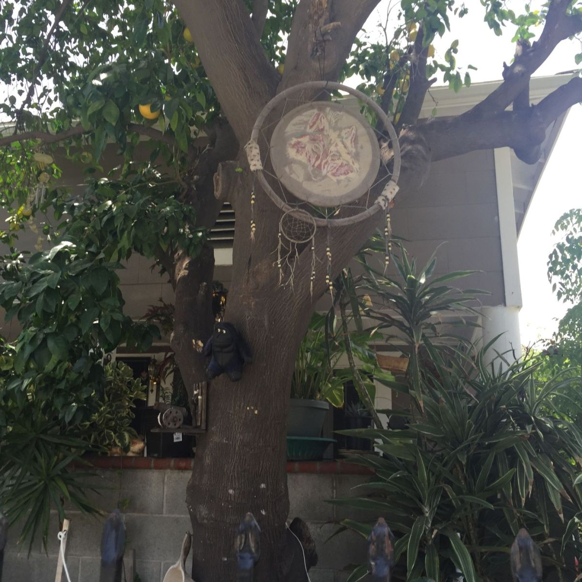 Lincoln Heights Dreamcatcher on Broadway