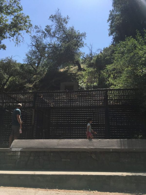 Griffith Park Zoo