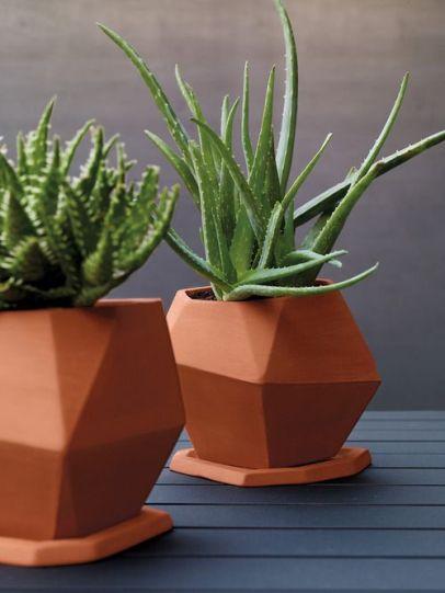 Vasos de planta em barro cru