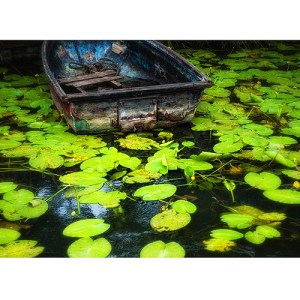 Rowing Boat and Water Lilies