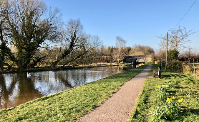 Shropshire Union Canal Nantwich March 2020