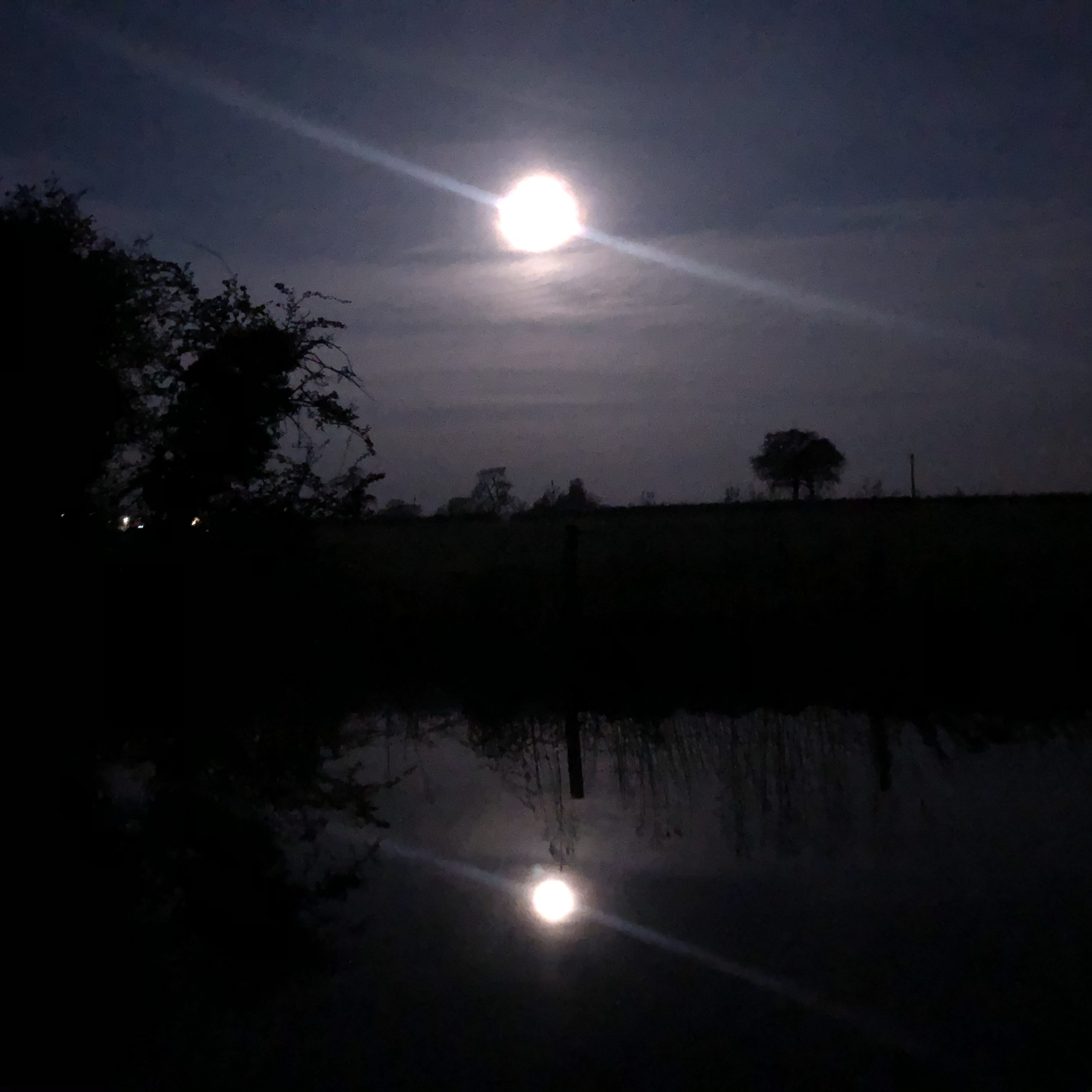 Moon setting Hurleston Junction April 2020