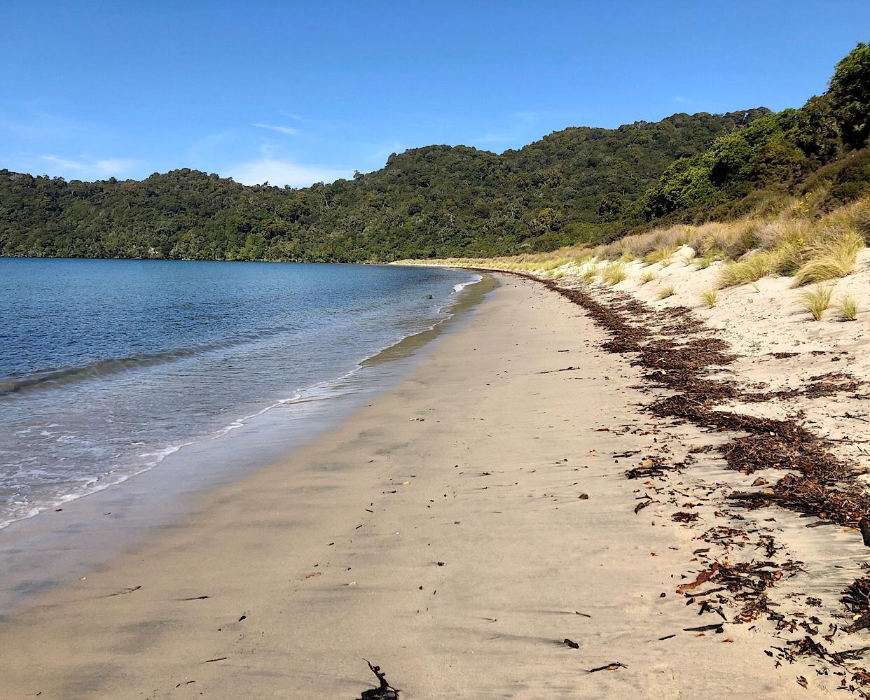 Maori Beach Stewart Island