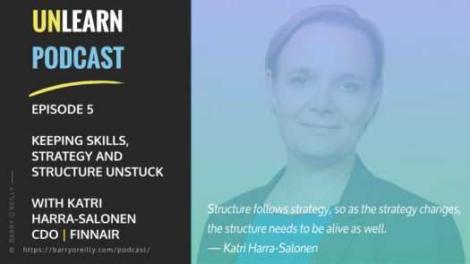 Skills, Strategy and Structure with Katri Harra-Salonen