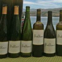 Mellissoni Vineyards, Lake Chelan, Washington - More Washington Wines!