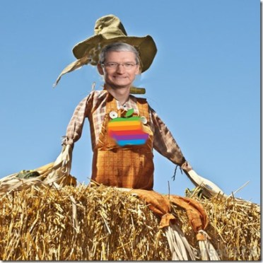scarecrow-on-bale-of-hay