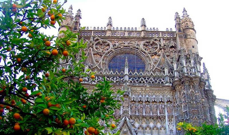 oranges seville