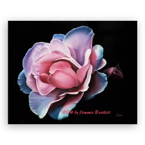 Blue Tipped Rose
